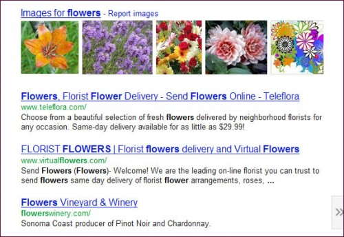Google Images in Universal Search